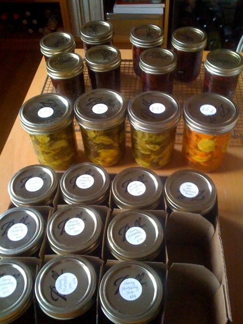 abundance of cans